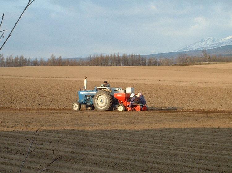 【春】畑を耕すトラクター