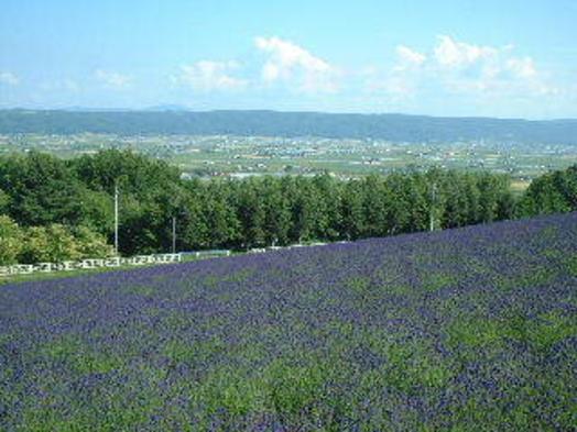 ★素泊まり★これぞ北海道!雄大な十勝岳連峰と畑の緑が美しい春から秋のプラン♪
