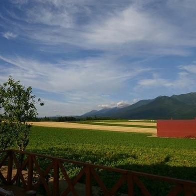 ★1泊2食付★これぞ北海道!雄大な十勝岳連峰と畑の緑が美しい春から秋のプラン♪