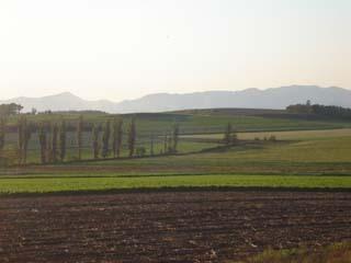 【秋】ひつじの丘前の広大な風景