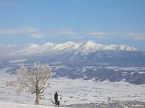 【富良野スキー場】十勝岳連峰が一望のゲレンデ頂上
