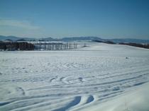 【冬】雪のベベルイ
