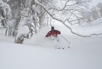 【バックカントリースキー】十勝岳・三段山