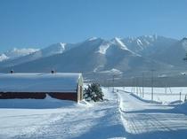 【冬】雪に覆われたベベルイ