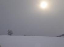 【冬】降りしきる雪の中の太陽