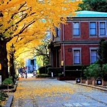 ホテル正面玄関の銀杏並木