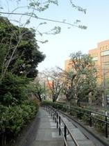 野毛山公園【徒歩2分⑦】