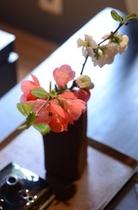 季節の山花(山桃色)