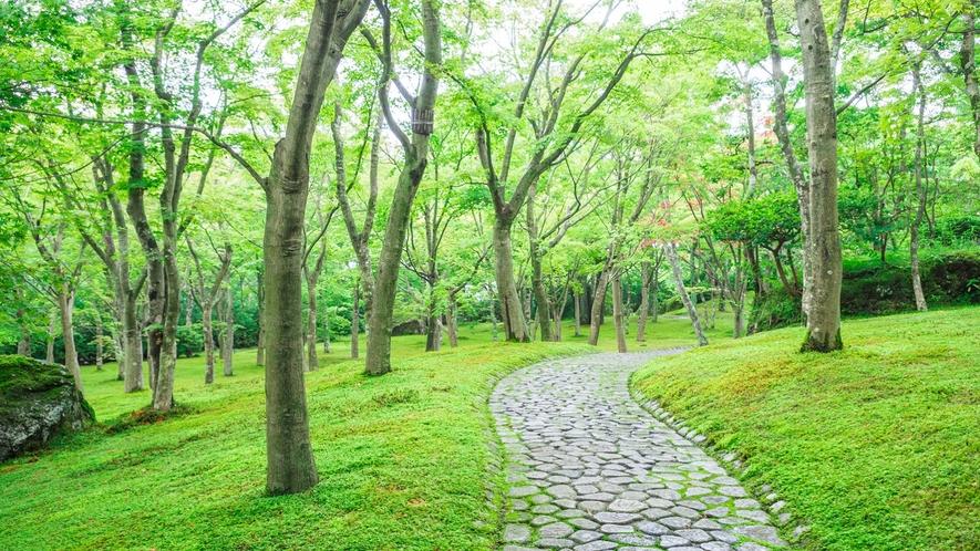 【箱根美術館】緑に癒されて