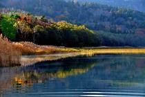 宇曾利湖 朝の情景