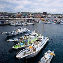 **【小田原漁港】周辺にはアジなどの新鮮な海鮮が食べられる飲食店や土産物店が軒を連ねています。