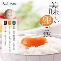 卵かけご飯①