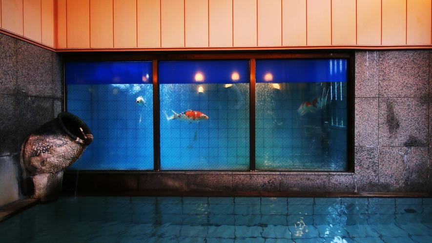 もしかしたら日本で唯一!?源泉かけ流しの温泉に浸かりながら鯉が舞う大浴場