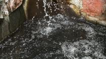 美人の湯モール温泉