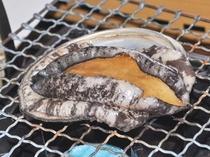 【料理】冬期限定『蝦夷あわびの網焼き』
