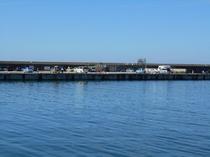 柏崎港西防波堤の釣り風景
