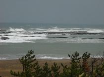 海の風景(12月)