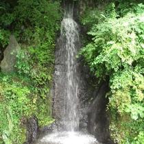 当館前のあたご滝