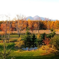 【秋】庭の紅葉と磐梯山