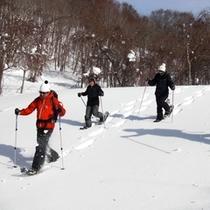 【冬】大人の雪遊び♪スノーシューツアー