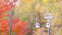 【秋】黄金色の落葉松と裏磐梯ロープウェイ