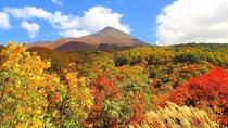 【秋】磐梯山ゴールドライン