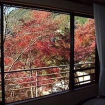 【和室一例】喧騒から離れた山里。丹沢の自然を眺めながら安らぎのひとときをお過ごしください。
