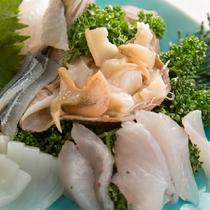 コリコリの貝