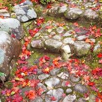 【敷地内景色】手入れの行き届いた中庭。京都らしい和の趣を大切にしております。