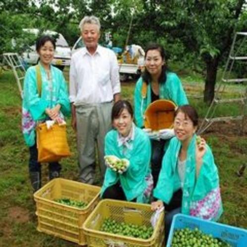 【収穫祭】越の梅
