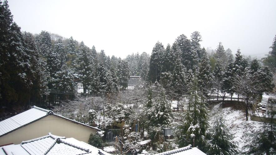 亀甲亭(12畳+広縁)からの眺め(雪景色)