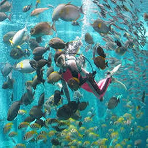 ■箱根園水族館