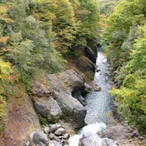 *猿橋渓谷(車で3分/徒歩10分)