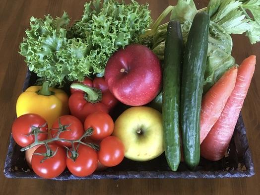 【新緑プラン】私のおすすめの季節です!新鮮な緑の世界・瑞々しい高原野菜・早朝の朝風呂温泉でさっぱり!