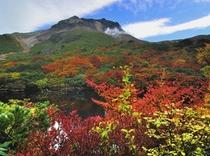 秋那須山2
