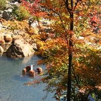 紅葉と大露天風呂(秋)