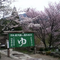 桜の頃の露天風呂入り口