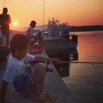 泊浜漁港での釣り