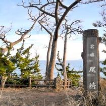 【尾崎神社】泊崎半島の最先端に位置、日の出と夕陽が同時に見られる『景勝地』です