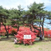 【徳仙丈山】標高711m、宿からは本吉町側登山口が近いです、宿から車で約1時間20分です