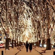 SENDAI光のページェント 12月のイベント 定禅寺通り会場まで当館より徒歩7分