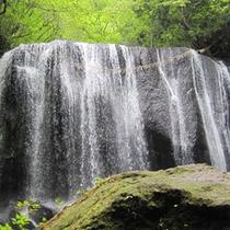 滝が流れて、夏は涼しいスポット