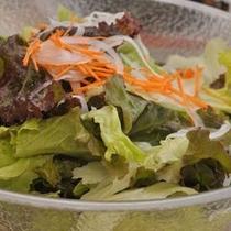【グリーンサラダ】緑のお野菜をた〜っぷりお召し上がりください♪