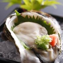隠岐産岩牡蠣