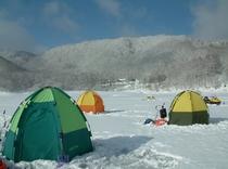 湖上からわかテント