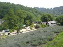 池田町夢農場