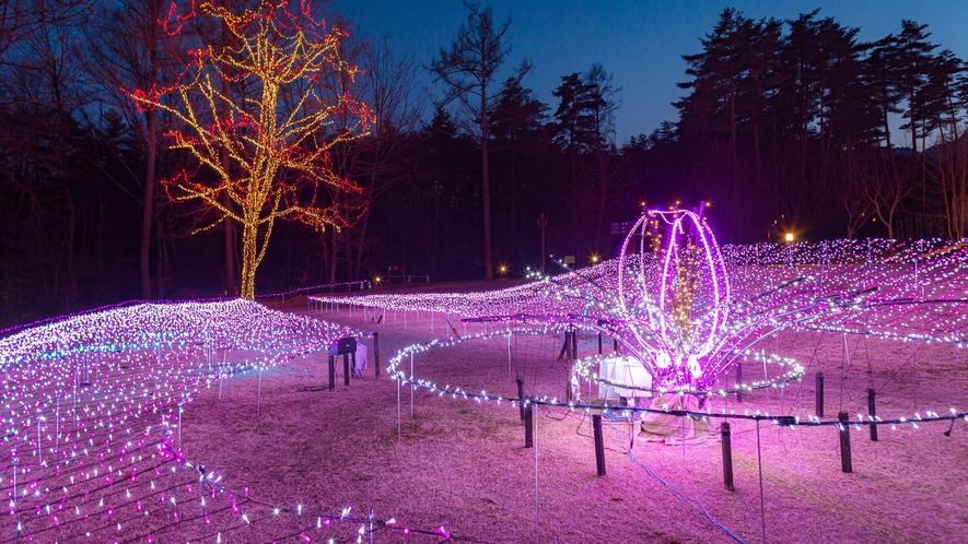 国営アルプスあづみの公園のイルミネーションは11月~1月までの限定!
