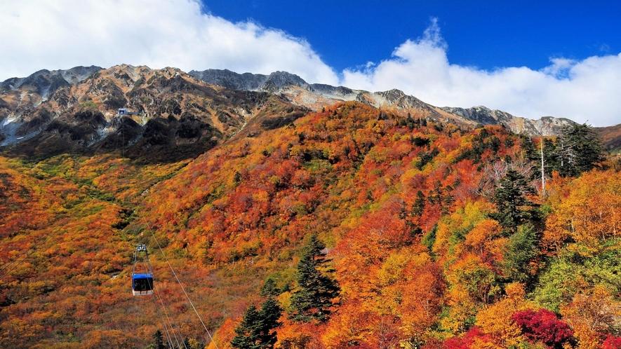 立山黒部アルペンルート日本一の高さのロープウェイ
