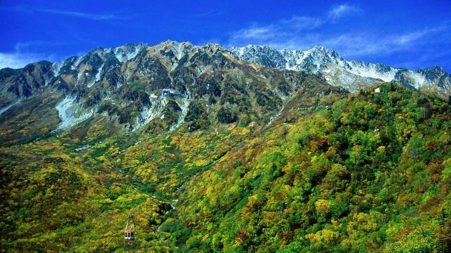 大観峰~黒部平ロープーウェイ 紅葉見頃は10月中旬