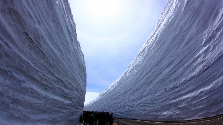 雪の大谷 立山室堂平は、世界でも有数の豪雪地帯。その積雪は20mを超えることも!